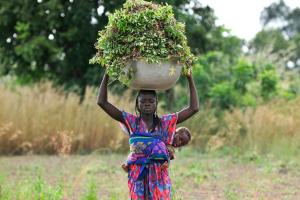 Ghanian woman carries basket of groundnuts on her head and a baby on her back