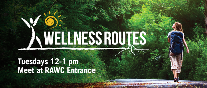 Wellness Routes 2019