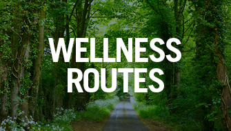 Wellness Routes