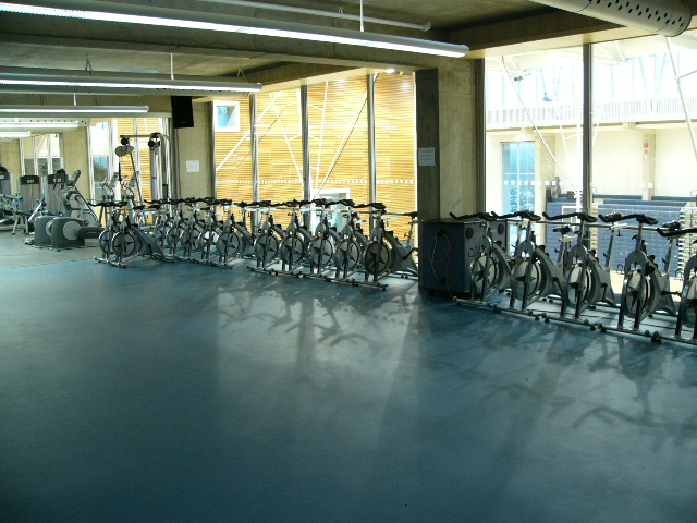 Bikes in the gym