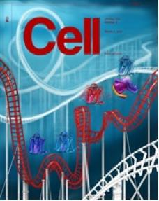 S Professor Scott Prosser's publication in one of the top Chemistry Journals - CELL