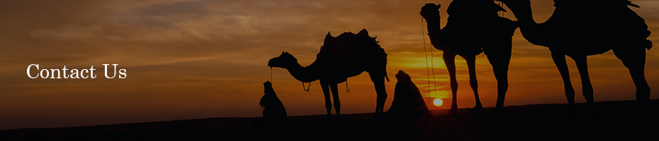 Image of camels crossing the Rajasthan Desert.