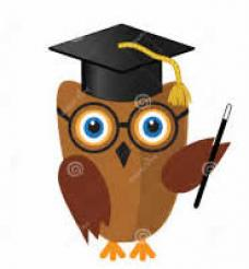owl in mortar board