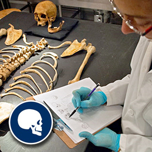 Forensic Anthropology Specialist Degree