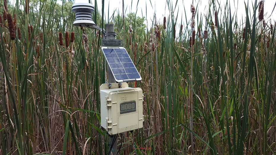 The pond environmental dataset station at the University of Toronto Mississauga