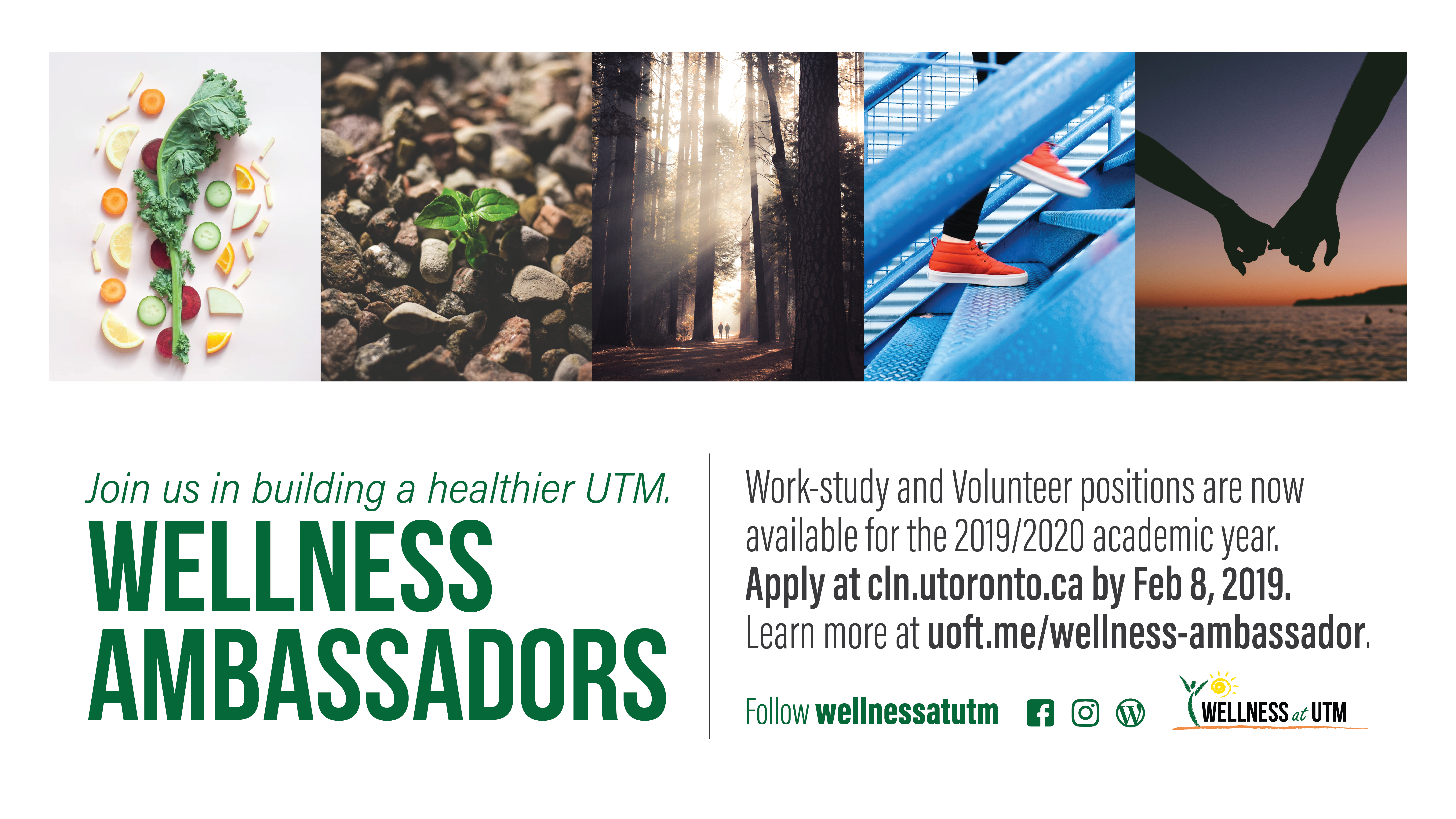Wellness Ambassadors | Health & Counselling Centre