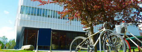 Innovation Complex outside; bikes and trees