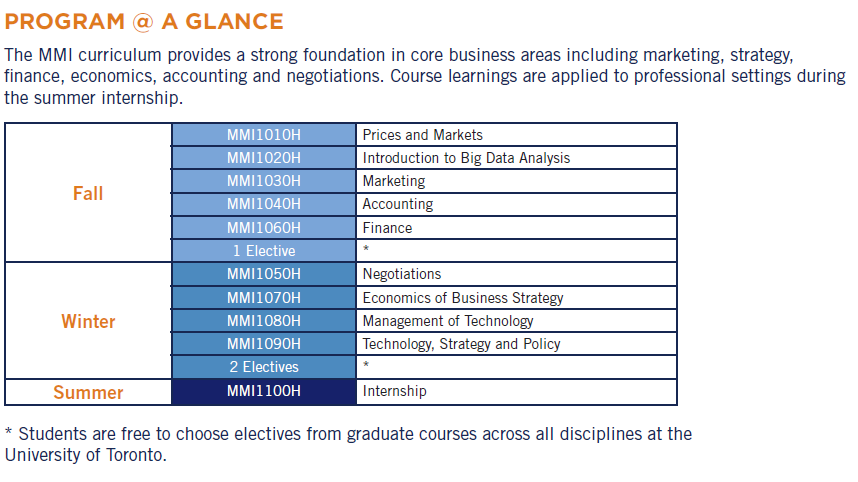 MMI Program at a Glance