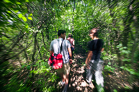 students walking through a wooded trail