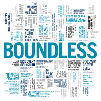 Case for Support Boundless campaign graphic