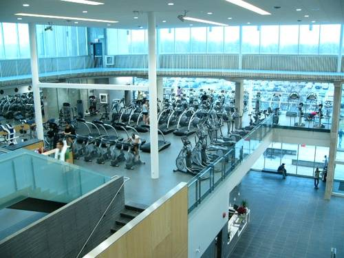 Top down photo of the gym with organized lines of various exercise machines.