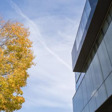 photo of building, tree in autumn and blue sky