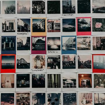 six by 11 grid of polaroids (individual images unclear)