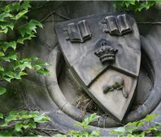 Stone crest surrounded by green ivy