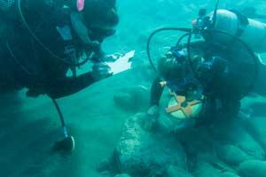 Two SCUBA divers examine a stone