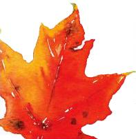 Leaf image for Canadian Perspective lecture series