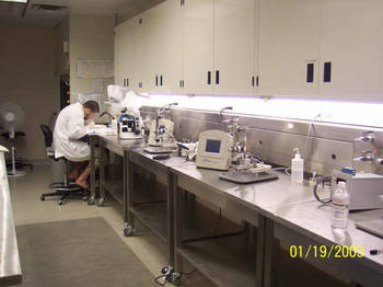 Image of a Researcher using Lab equipment