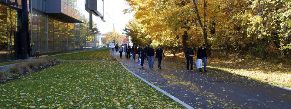Students on CCT pathway in the Fall