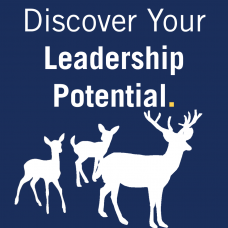 Discover your leadership potential