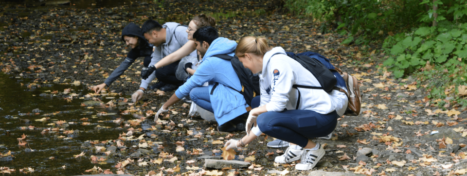 Students participating in a shoreline cleanup