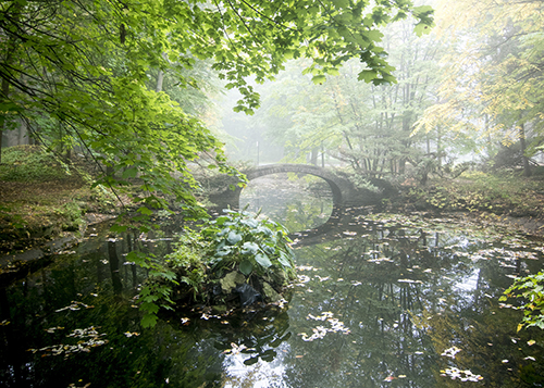 Lislehurst bridge is summer, surrounded by mist