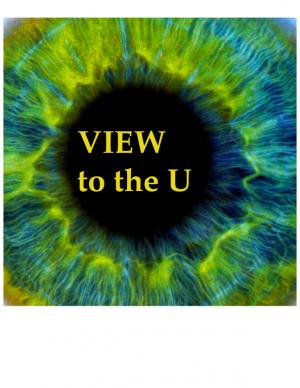 Image of VIEW to the U logo